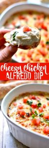 Cheesy Chicken Alfredo Dip Recipe