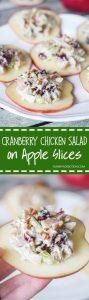 Cranberry Chicken Salad on Apple Slices